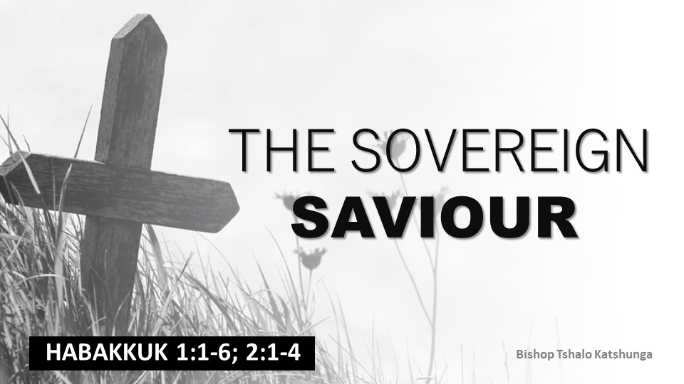 The Sovereign Saviour